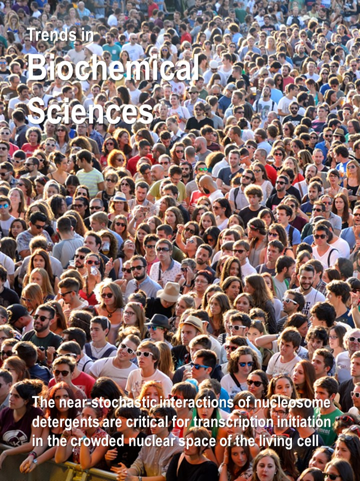 Publications Cover - trends biochemical sciences