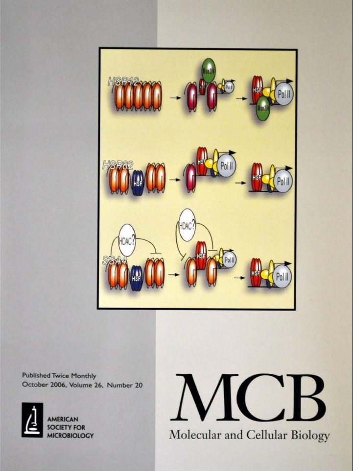 Publications Cover - Molecular and Cellular Biology