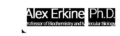 Alex Erkine Ph.D.